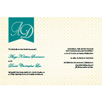 Wedding Invitations WI22-Hens Night Photo Invitations, photo cards, hens night, invitations, photo invitations, bridal shower invitations, kitchen tea invitations, cocktail party invitations, wedding invitations, save the date cards, engagement invitations